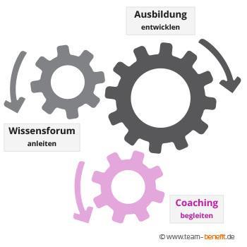 Akademie Coaching web