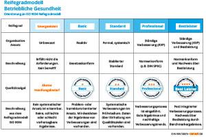 Team beneFIT Reifegradmodell BGM Übersicht web