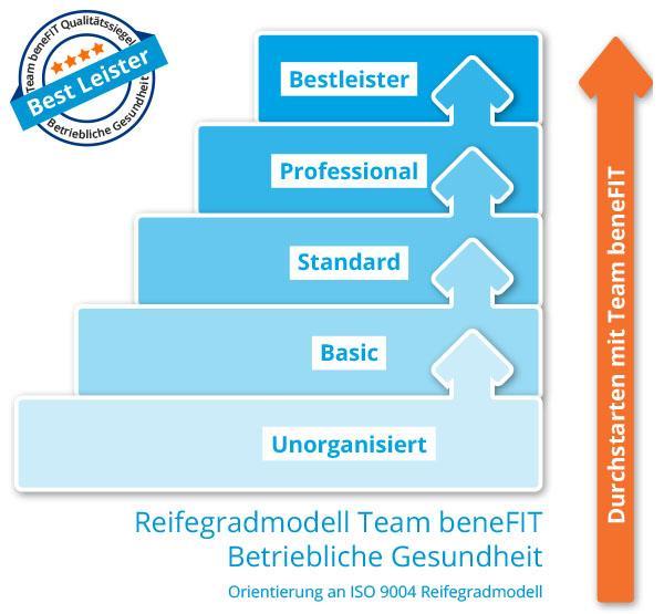 Reifegradmodell BGM Grafik web
